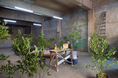 Web-Micro-Micro-Revolutions-500-lemon-trees_Manila-Research_03_s