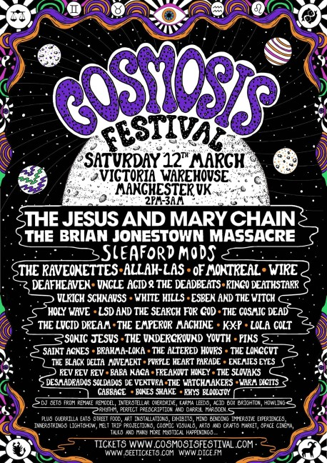 Cosmosis poster