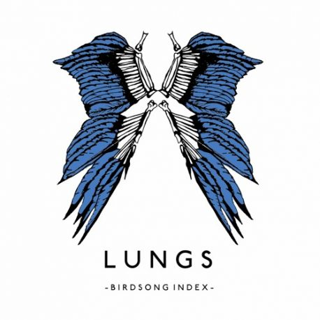 LUNGS band on the wall