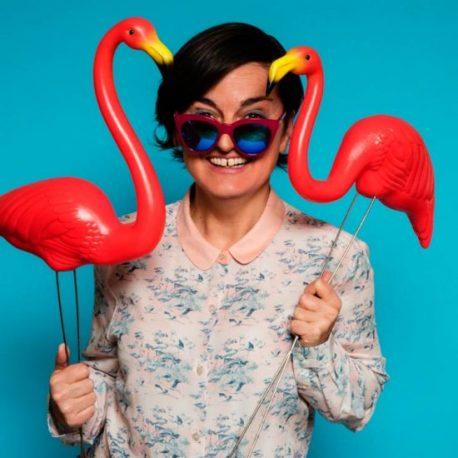 Zoe-lyons-flamingos-550x550
