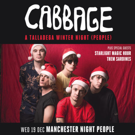 Cabbage_1200_Xmas-768x768